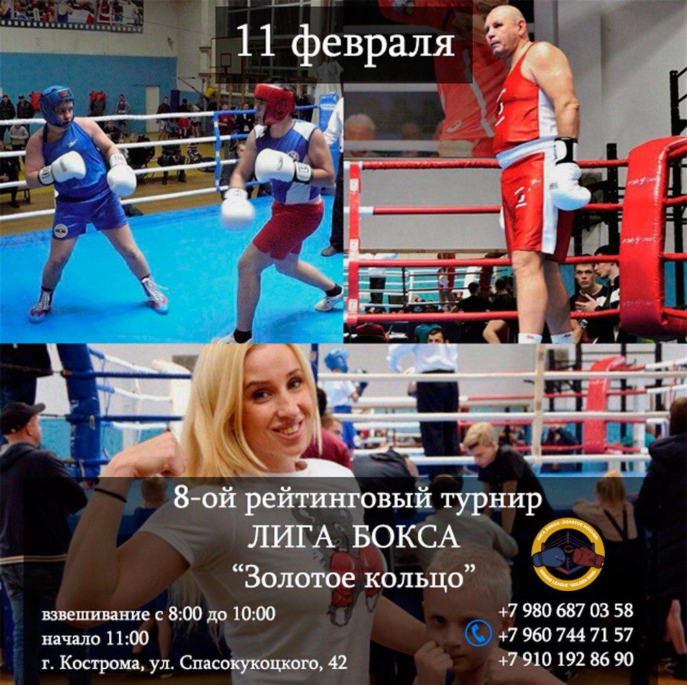 Liga_boksa