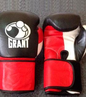 Боксерские перчатки Leone ExWhite