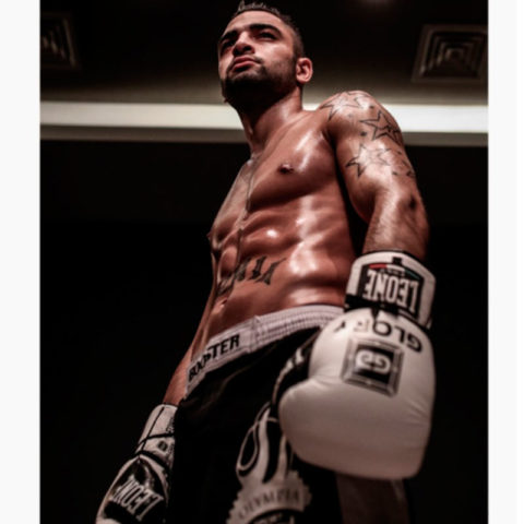 "Боксерские перчатки ""Leon glory"""