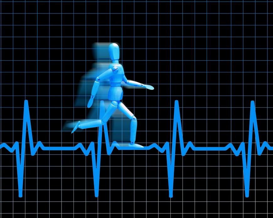 Расчет пульса спортсмена на тренировках